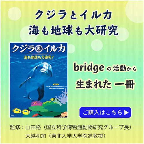 出版物 クジラとイルカ