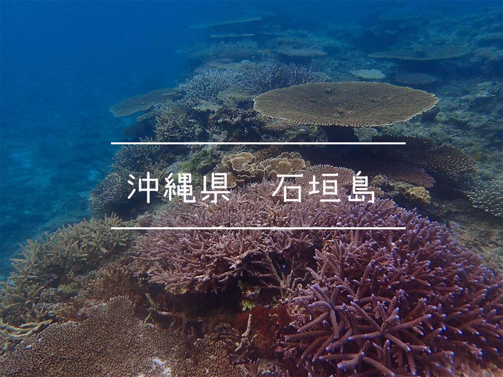 沖縄県石垣島